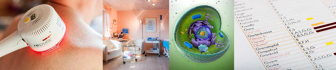 Cellsymbiosistherapie.jpg