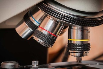 Mikroskop Blutuntersuchung